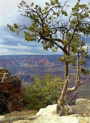Photograph - Along The Rim by Gordon Beck