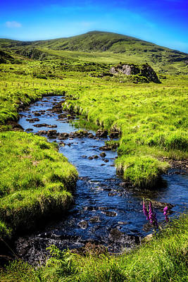 Photograph - Along The Ring Of Kerry by Debra and Dave Vanderlaan