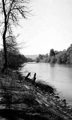 Photograph - Along The River Bank by Teri Schuster