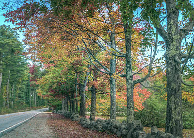 Photograph - Along The Road by Jane Luxton