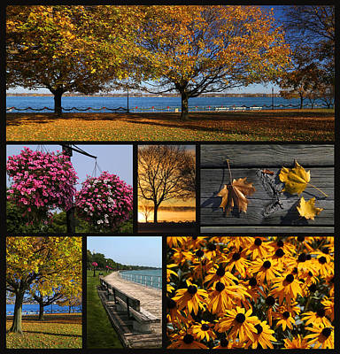 Photograph - Along The Saint Clair Boardwalk Black Background by Mary Bedy