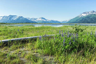 Photograph - Along The Seward Highway, No. 2 by Belinda Greb