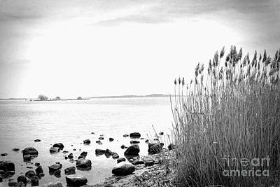 Blue Hues - Along The Shore by Joe Geraci