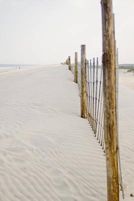 Maryland Horses Photograph - Along The Shore by Matthew Saindon