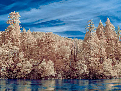 Photograph - Along The Smith River In Infrared by Greg Nyquist