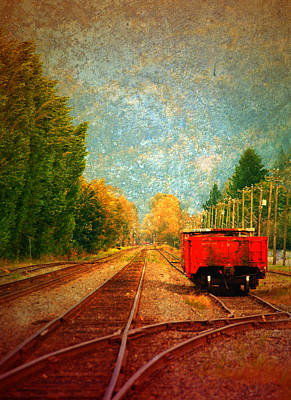 Photograph - Along The Tracks by Tara Turner