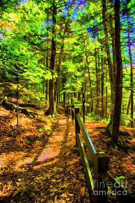 Photograph - Along The Trail by Rick Bragan