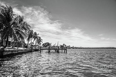 Photograph - Along The Water by Liesl Marelli