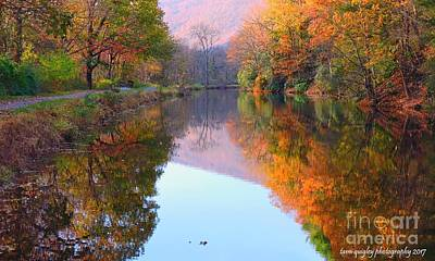 Photograph - Along These Autumn Days by Tami Quigley