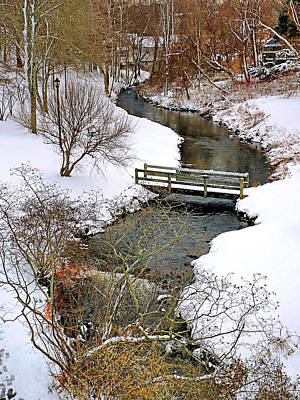 Photograph - Along Town Brook Plymouth Ma by Janice Drew