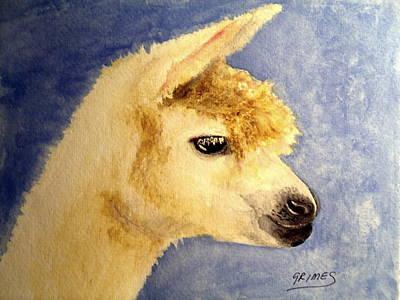 Painting - Alpaca Baby by Carol Grimes