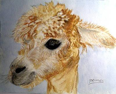 Painting - Alpaca Cutie by Carol Grimes
