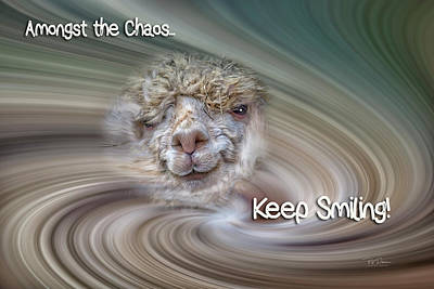 Digital Art - Alpaca Smile by Bill Posner