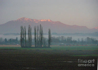 Photograph - Alpenglow  by Jeanette French