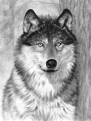 Drawing - Alpha by Carla Kurt
