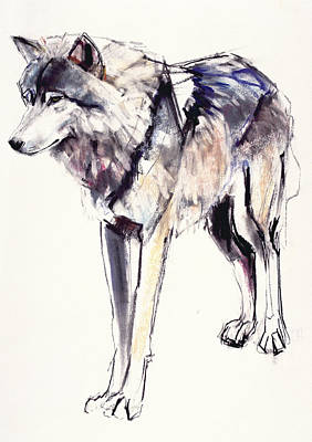 Wolves Drawing - Alpha by Mark Adlington