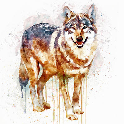 Watercolour Mixed Media - Alpha Wolf by Marian Voicu