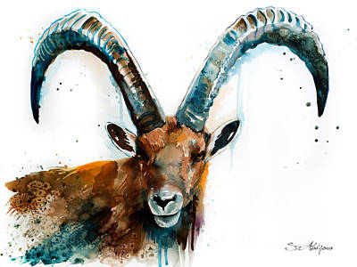 Sheep Mixed Media - Alpine Ibex  by Slavi Aladjova