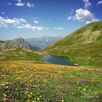 Photograph - Alpine Lake by Delphimages Photo Creations