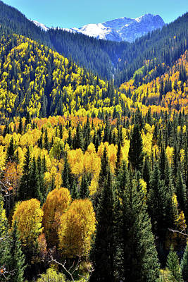 Photograph - Alpine Loop Valley by Ray Mathis