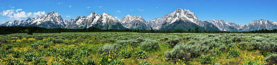 Alpine Meadow Teton Panorama II Art Print