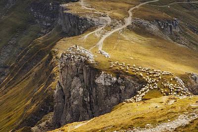 Shepherds Photograph - Alpine Pastures by Mihai Ian Nedelcu