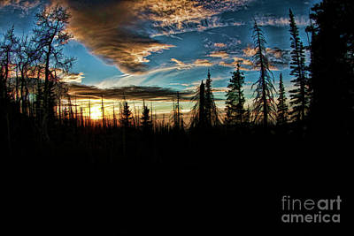 Photograph - Alpine Pond Sunset by Blake Richards