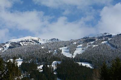Photograph - Alpine Splendor by Fraida Gutovich