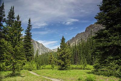 Photograph - Alpine Summer by Kunal Mehra
