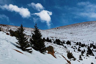 Steven Krull Royalty-Free and Rights-Managed Images - Alpine View from Pikes Peak by Steven Krull