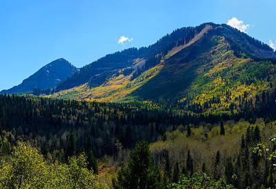 Photograph - Alpine Vista by Tikvah's Hope