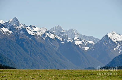 Photograph - Alps And Valleys Of New Zealand. Lord  Of The Ring Scenery by Yurix Sardinelly