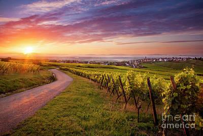Haut-rhin Photograph - Alsace Dawn by Brian Jannsen