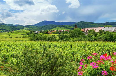 Photograph - Alsace Landscape, France by Elenarts - Elena Duvernay photo