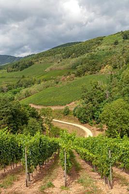 Alsatian Wall Art - Photograph - Alsatian Hills by W Chris Fooshee