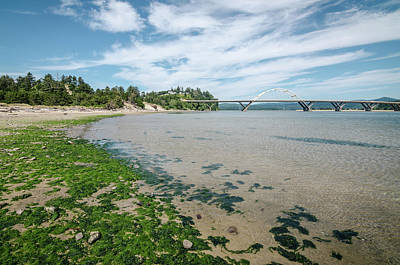 Photograph - Alsea Bay In The Summer by Margaret Pitcher