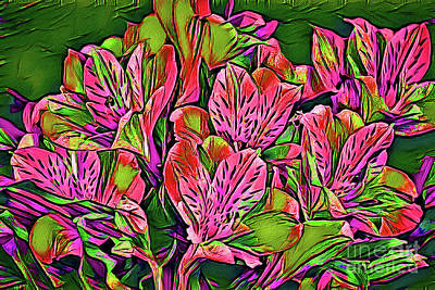 Photograph - Alstroemeria 157 by Ray Shrewsberry