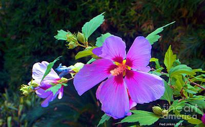 Althea Digital Art - Althea Blossom by Fred Jinkins