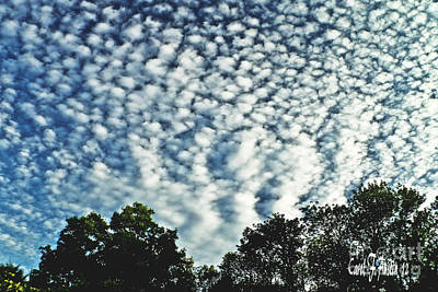 Altocumulus Mackeral Cloud Formation  Art Print by Carol F Austin