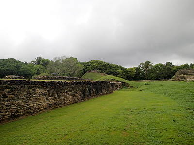 Photograph - Altun Ha #1 by Lois Lepisto