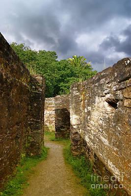 Photograph - Altun Ha Mayan Ruins by Olga Hamilton