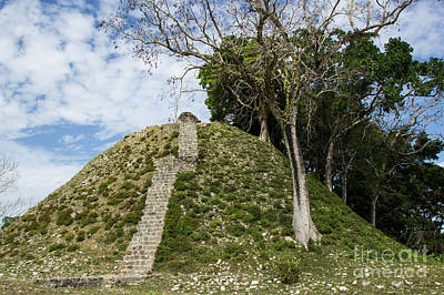 Photograph - Altun Ha Ruins by Suzanne Luft