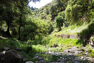 Photograph - Alum Rock Dry Creekbed by Suzanne Luft