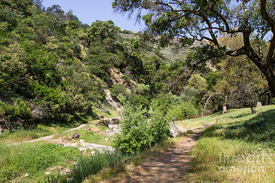 Photograph - Alum Rock Hike by Suzanne Luft