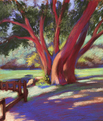 Drawing - Alvarado Wildcat Canyon by Linda Ruiz-Lozito