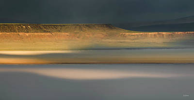 Photograph - Alvord Desert Light by Leland D Howard
