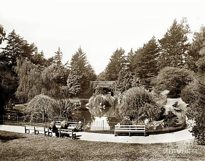 Photograph - Alvord Lake Bridge Golden Gate Park by California Views Mr Pat Hathaway Archives