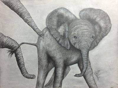 Elephant Pencil Drawing Drawing - Always Near by Annamarie Sidella-Felts