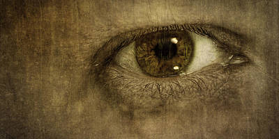 Textures Photograph - Always Watching by Scott Norris