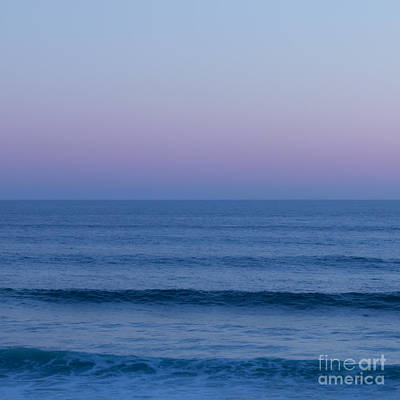 Photograph - Am I Blue by Ana V Ramirez